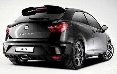 seat-ibiza-cupra-r210-swiss-racing-p2