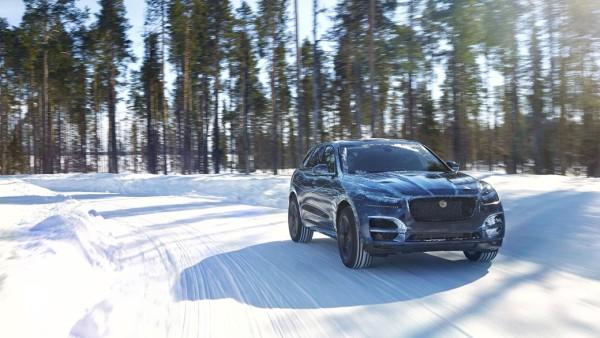 jaguar-f